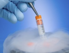 Egg Freezing (Vitrification) in Lebanon