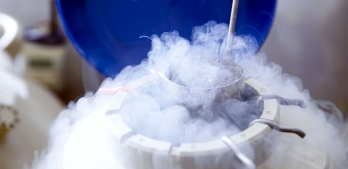 Fertility Preservation in Lebanon, egg freezing Lebanon